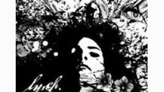 Adore - Lynch