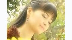 Dịu Dàng Sắc Xuân - Trang Nhung