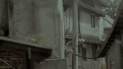 陪伴者 / Người Bạn - Lưu Nhược Anh
