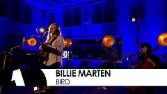 Bird (Future Festival 2016) - Billie Marten