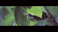 Rainy Day Ever Green - HiNi