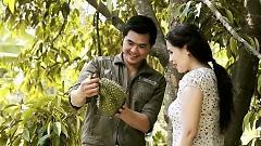 Hương Sầu Riêng Muộn - Nguyễn Phú Quý , Thùy Dương