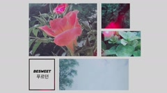 WOODLAND - Besweet