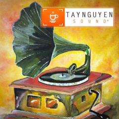 TaynguyenSound