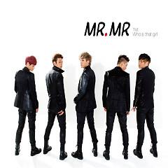 Mr.Mr