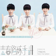 Manual Of Youth / 青春修炼手册 - TFBoys