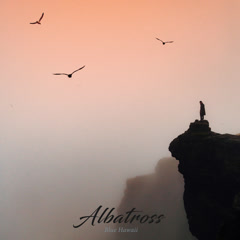 Albatross (Single)