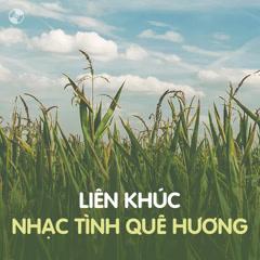 Liên Khúc Nhạc Tình Quê Hương - Various Artists