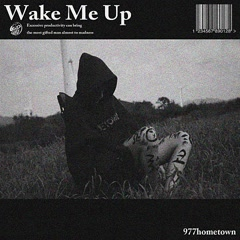 Wake Me Up (Single)