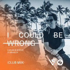 I Could Be Wrong (Club Radio Mix) - Lucas, Steve & Brandy