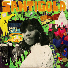 I Don't Want: The Gold Fire Sessions - Santigold