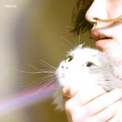 Hahoo (Single) - Lili Coy