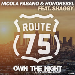 Own The Night (Alex Guesta Tribal Mix) - Nicola Fasano, Honorebel, Shaggy
