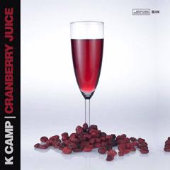 Cranberry Juice (Single) - K-Camp
