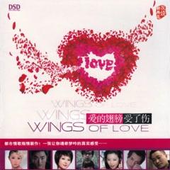 Đôi Cánh Tình Yêu Bị Tổn Thương / 爱的翅膀受了伤 - Various Artists