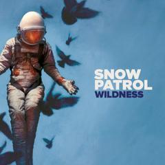 Wildness (Deluxe)