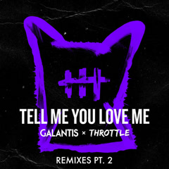 Tell Me You Love Me (Remixes, Pt. 2)