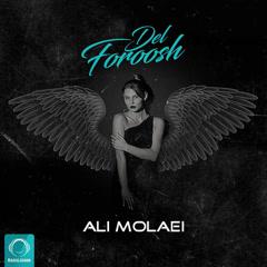 Delforoosh (Single)