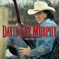 No Zip Code - David Lee Murphy