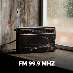 FM 99.9MHz - Various Artists