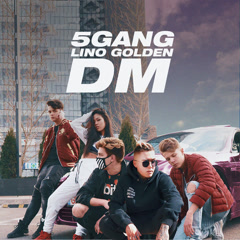 DM (Single) - 5Gang