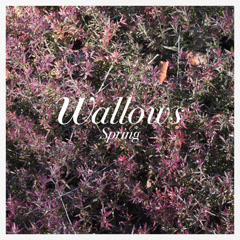 Spring (EP) - Wallows