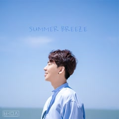 Summer Breeze (Single)