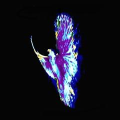 Marco (The Phoenix) (Single)