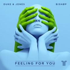 Feeling For You (Single)