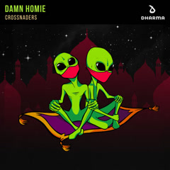 Damn Homie (Single) - Crossnaders