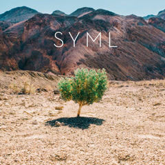 In My Body (EP) - SYML