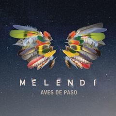 Aves De Paso (Single)