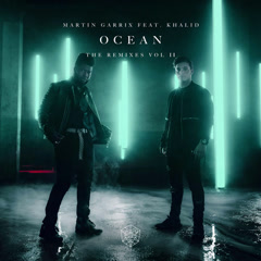Ocean (Remixes, Vol. 2) - Martin Garrix
