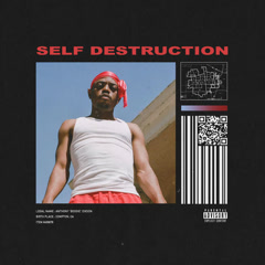 Self Destruction (Single)