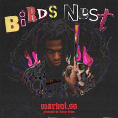 Birds Nest (Single) - Warhol.SS
