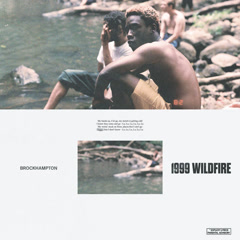 1999 WILDFIRE (Single) - BROCKHAMPTON