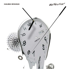 What Time Is It Now? (Single) - Hash Swan