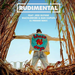 These Days (DJ Premier Remix) - Rudimental