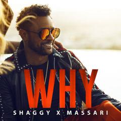 Why (Single) - Shaggy, Massari