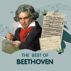 Những Bài Hát Hay Nhất Của Beethoven - Beethoven