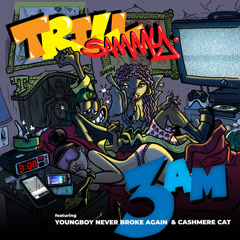 3AM (Single) - Trill Sammy