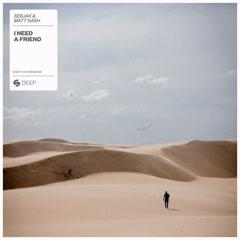 I Need A Friend (Single) - Sebjak, Matt Nash