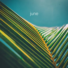 June (Single) - The Foreign Exchange