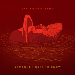 Someone I Used to Know (Single)