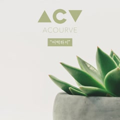 What Can I Do (Single) - Acourve
