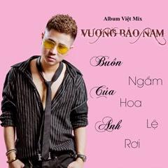 Ngắm Hoa Lệ Rơi (Remix) - Vương Bảo Nam