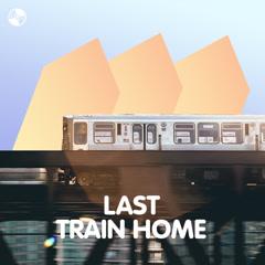 Last Train Home - Various Artists