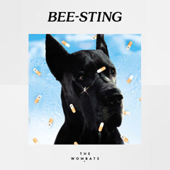 Bee-Sting (Single) - The Wombats