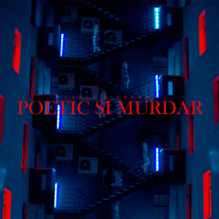 Poetic Si Murdar (Single)