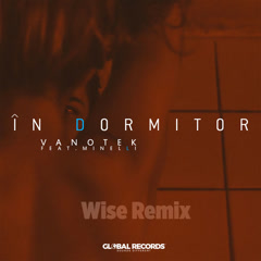 In Dormitor (Wise Remix)